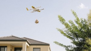 wing-drony-2